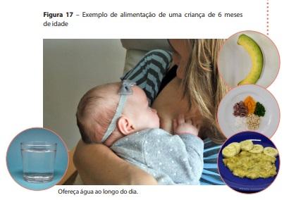 Imagem retirada do Guia Alimentar para Crianças Brasileiras Menores de 2 Anos. Página 49.